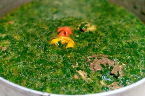 Article : Les 10 plats tchadiens les plus  incontournables